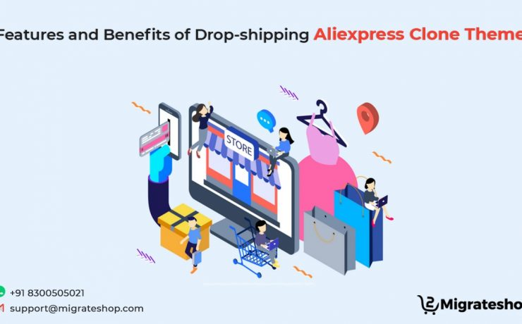 Dropshipping Aliexpress Clone Theme