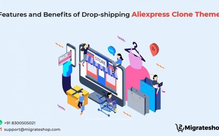 Dropshipping Aliexpress Clone Theme