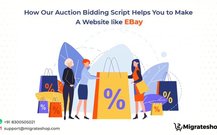 Auction Bidding Script