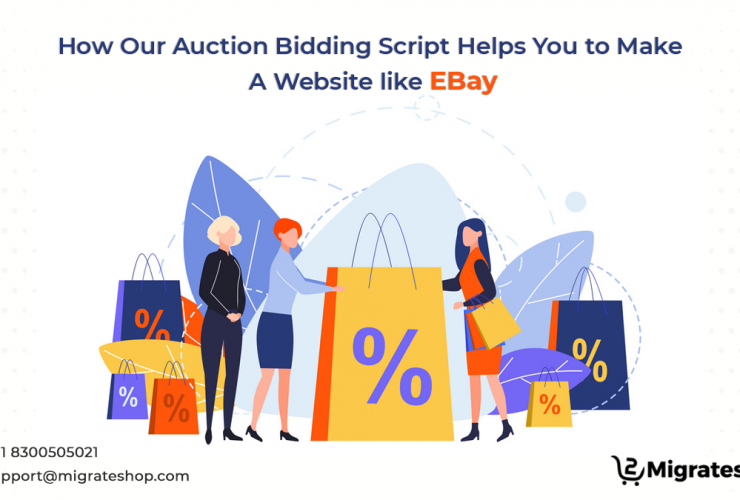 Auction Bidding Script