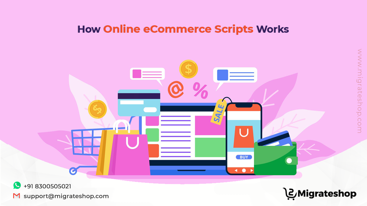 how-online-ecommerce-scripts-works