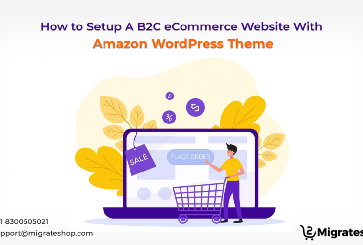 How to Setup A B2C eCommerce Website With Amazon WordPress Theme