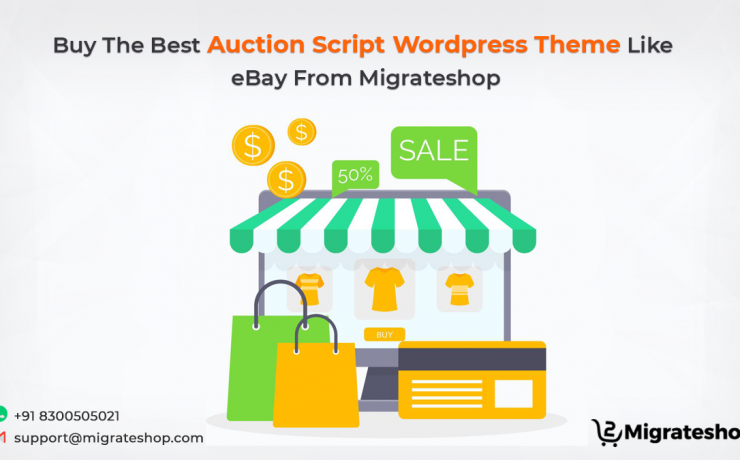 Auction Script WordPress Theme